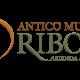 Logo-Riboli-approvato